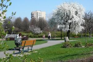 park-wiosna-04